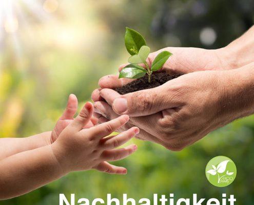 Nachhaltigkeit beim Raumausstatter - Tawico Heimdecor